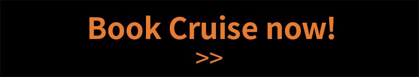 cruise_new