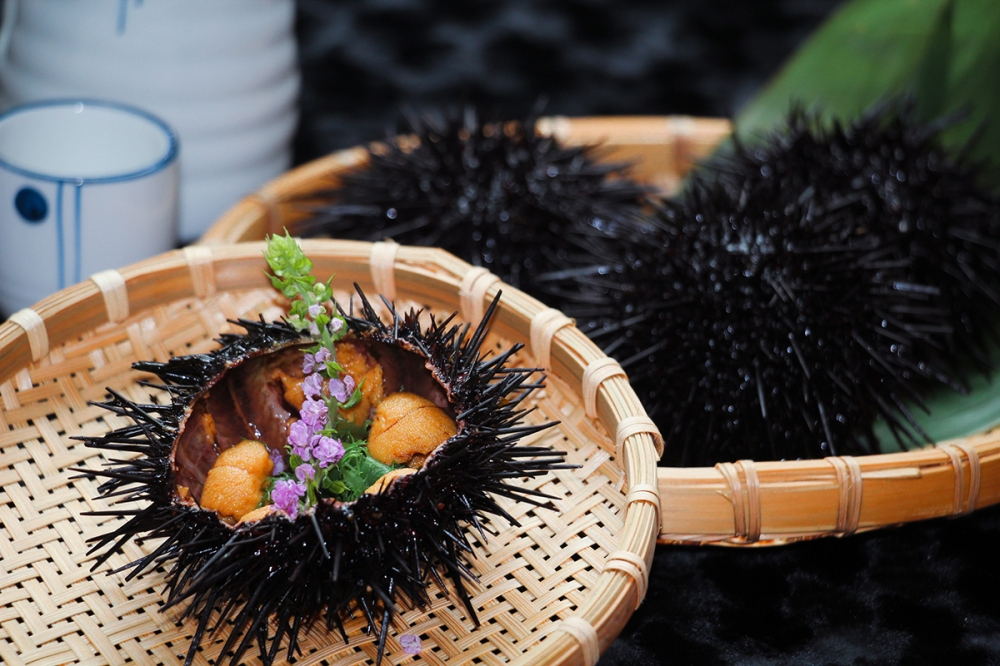 Sea Urchin promotion - Umami Restaurant + Bar Resized